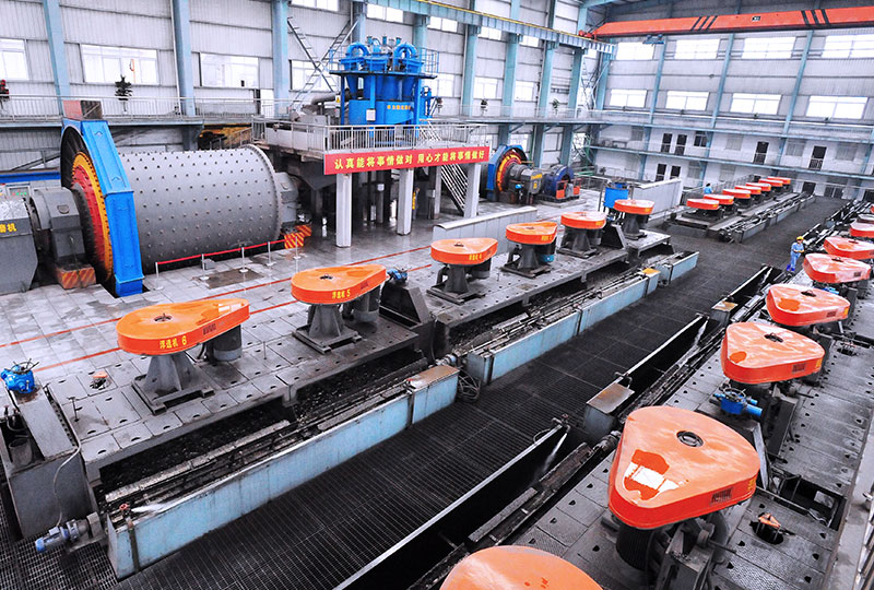 1200T/D Flotation Plant for Gold Ore in Cambodia